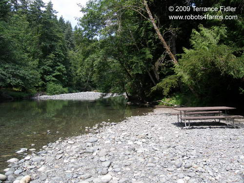 Chemainus River with picnic table