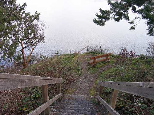 Deep Cove - path to water